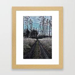 autumnal sunny blue afternoon forest road Framed Art Print