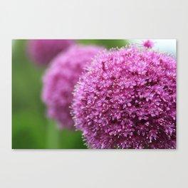 Simple(ly) Beautiful (Purple Plant Flower Leaf) Canvas Print