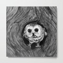 Baby Owl, Black and White Metal Print