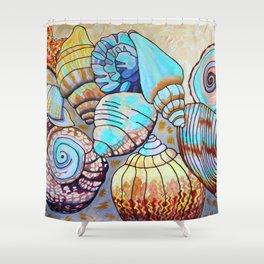 Belizean Shells Shower Curtain