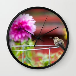 Meal Planning For Hummingbirds Wall Clock