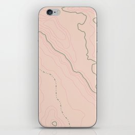 Maps Maps Maps iPhone Skin