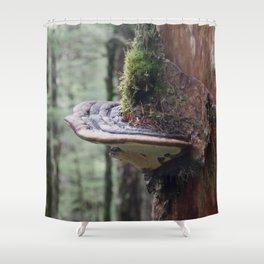 Magical Fungi World | Nature Photography Shower Curtain