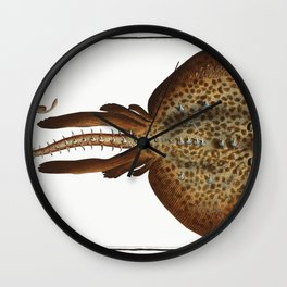 Rough Ray (Raja Rubus) from Ichtylogie ou Histoire naturelle generale et particuliere des poissons ( Wall Clock