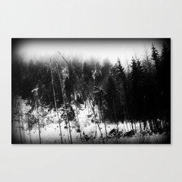 Forest Dark VII Canvas Print