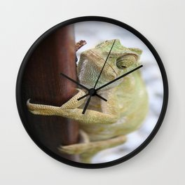 I'm A Bit Of A Chameleon Wall Clock