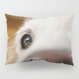 Fluffy Tetriever Close up Pillow Sham
