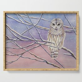 Barred Owl Serving Tray