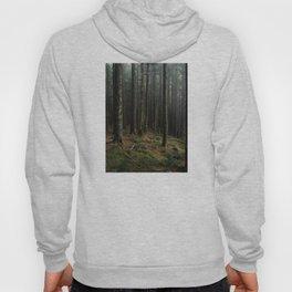 Gorge Woods Hoody