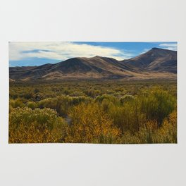 High Desert 2 Rug