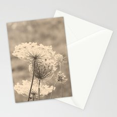 Lace in the Meadow Stationery Cards