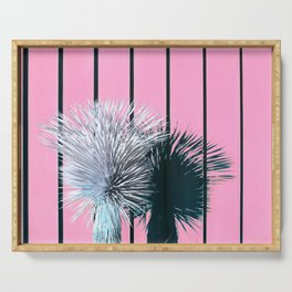 Yucca Plant in Front of Striped Pink Wall Serving Tray