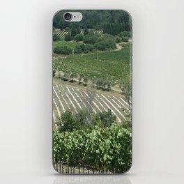 Tuscan Vineyard iPhone Skin