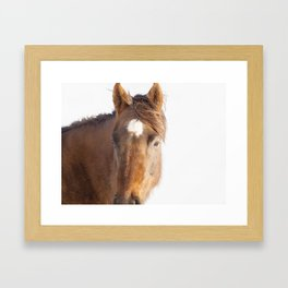 Modern Equestrian Photo Framed Art Print