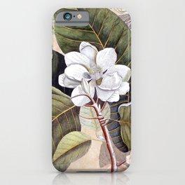 Vintage White Magnolia iPhone Case