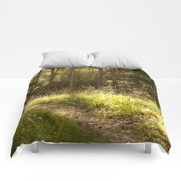 Forest Path Sunny Day #decor #society6 Comforters