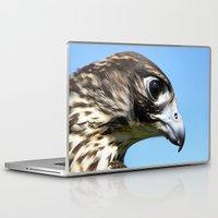 falcon Laptop & iPad Skins featuring Peregrine Falcon by Christina Rollo
