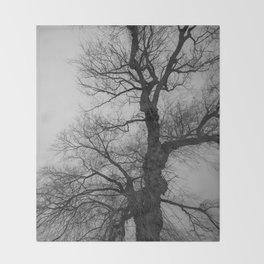 Nature Photography Weeping Willow | Lungs of the Earth | Black and White Throw Blanket