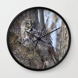 Great Gray Goddess Wall Clock