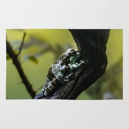 Frog Far From Home Rug