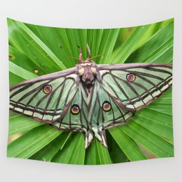 Spanish Moon Moth on Spiraling Palm Plant Wall Tapestry