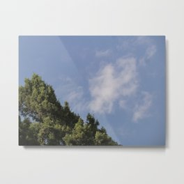 Two Levels of Earth Metal Print