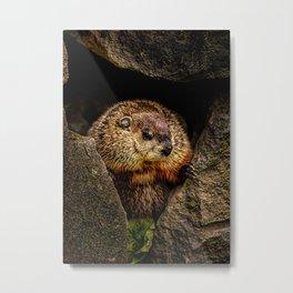 Groundhog Day Metal Print