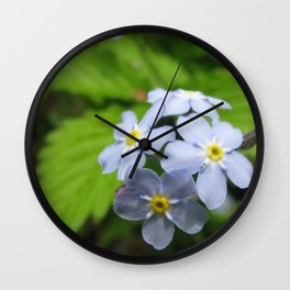 USA - MINNESOTA - Forget-me-nots Wall Clock