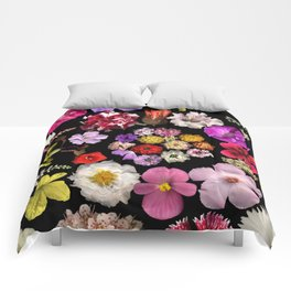Dueling Families Comforters