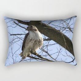 Accession Rectangular Pillow