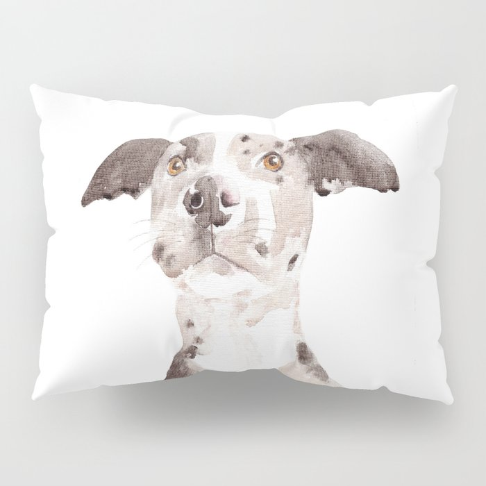 Jake Pillow Sham
