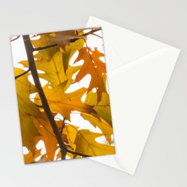 Golden oak leaves Stationery Cards