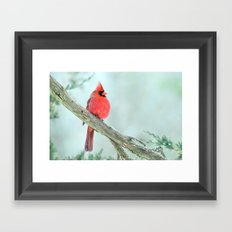 Elegant Cardinal Framed Art Print