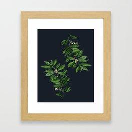 Coca Framed Art Print
