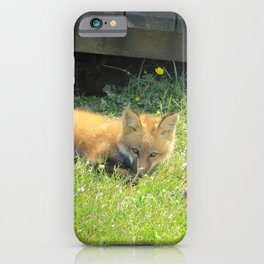 YOUNG RED FOX RELAXING iPhone Case