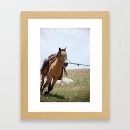 A Light Gallop Framed Art Print