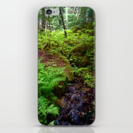 Hiking in Whistler-Blackcomb iPhone Skin