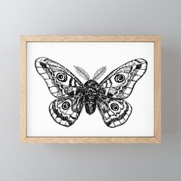 Emperor moth drawing Framed Mini Art Print