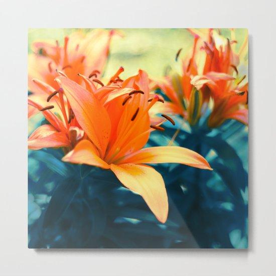 Summer Lilies I Metal Print