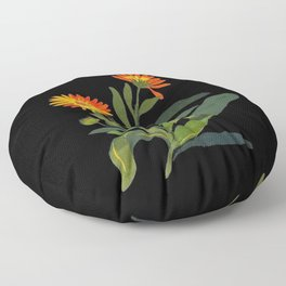 Calendula Officinalis Mary Delany Floral Paper Collage Delicate Vintage Flowers Floor Pillow