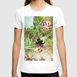 bumble bee on the dunes I T-shirt
