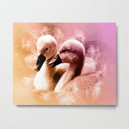 Cygnet Swan Siblings Metal Print