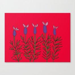 Lavender red Canvas Print