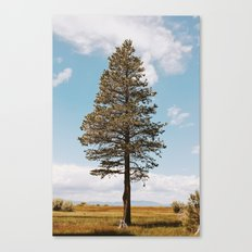 Marsh Tree Canvas Print