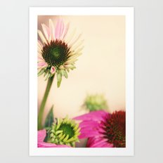 Floral Photography Art Print