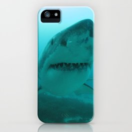 Great White Shark Carcharadon carcharias iPhone Case