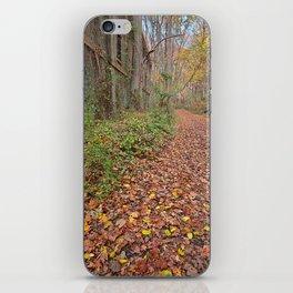 Fall Power House Trail iPhone Skin