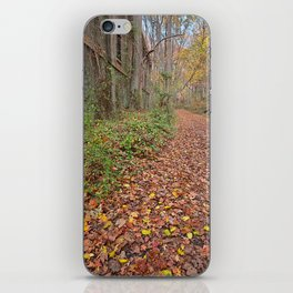 Fall Power House Trail iPhone Skin