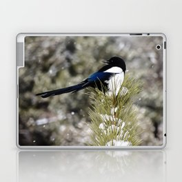 Black-billed Magpie Laptop & iPad Skin