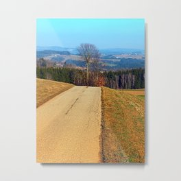 Tree in the middle of the road | landscape photography Metal Print